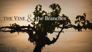 The Vine & the Branches, Part Eight: Parting Words